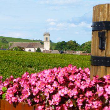 Burgundy France Landscape